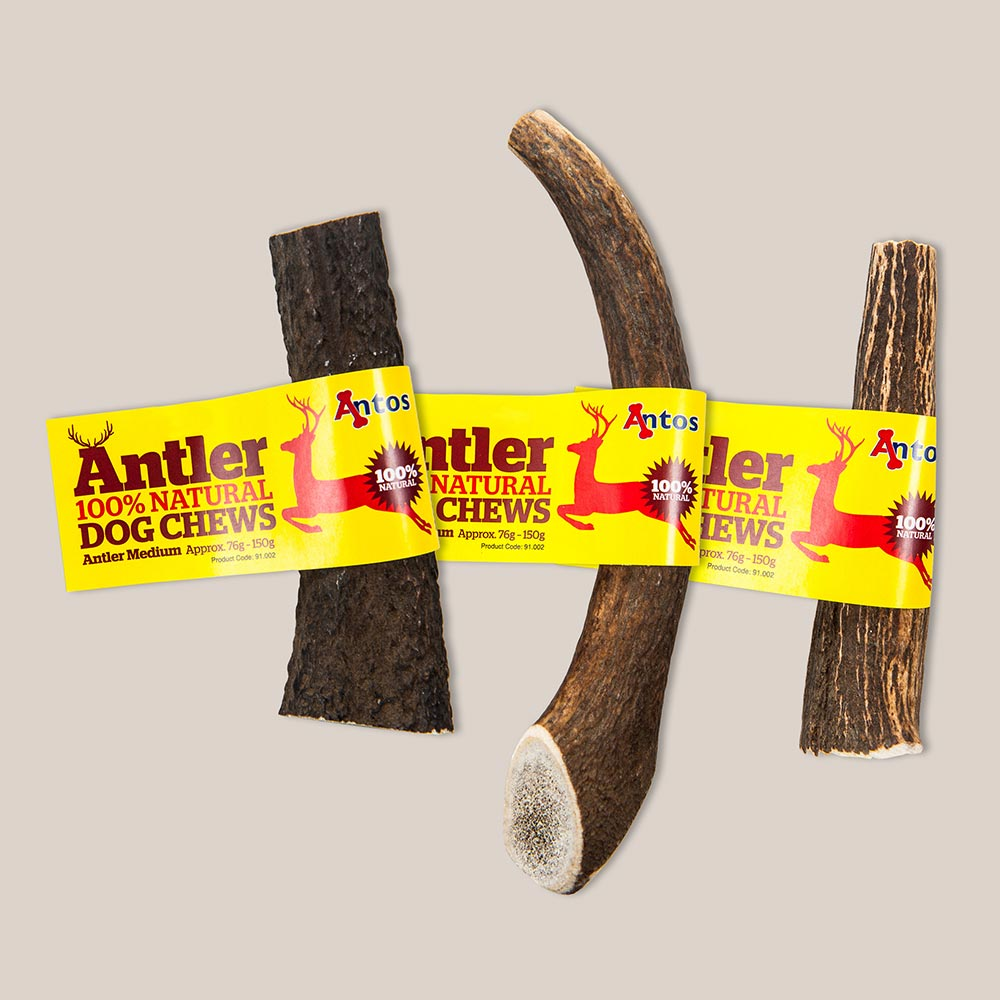 Antler Dog Chews Medium